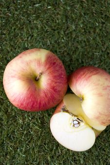 Free Fresh Apple On Grass Stock Photography - 34326462
