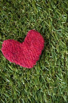 Free Red Heart On Grass Background Royalty Free Stock Images - 34326519