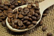 Free Coffee Beans Stock Image - 34328841