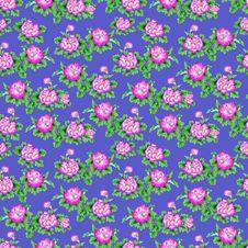 Free Oriental Pattern02 Royalty Free Stock Photo - 34335605