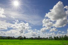Free Rice Field And Cloud Stock Photos - 34347203