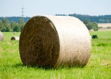 Free Straw Royalty Free Stock Photography - 34376527