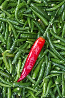 Free Pepper Stock Images - 34379274