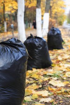 Free Garbage Bags Stock Photography - 34384892