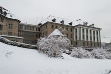 Zurich In A Cold Day Stock Photography