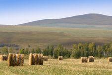 Free Hay Bale Stock Image - 3440471