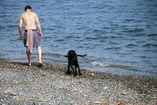 Free Man Beach Dog Royalty Free Stock Photos - 3442418