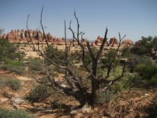 Canyonlands - Chesler Park Royalty Free Stock Photos