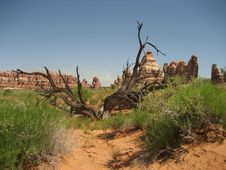 Chesler Park - Canyonlands Royalty Free Stock Images