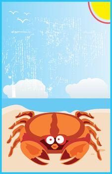 Free Cute Crab Beach Stock Photos - 3442933