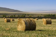 Free Hay Bale Stock Photos - 3443583