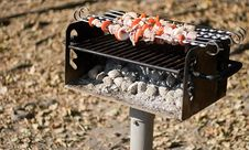 Free Autumn Barbecue In The Park Royalty Free Stock Photo - 3443935