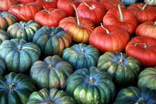 Free Late Summer Harvest Stock Images - 3444534