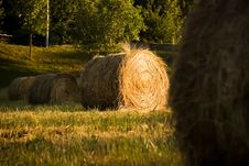 Free Straw Bales Royalty Free Stock Photo - 3445865