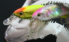 Free Fish Skull And Lures Stock Image - 3445871