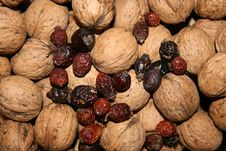 Free Walnuts And Hips Stock Photo - 3446710