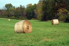 Hay Rolls In A Green Field Royalty Free Stock Image