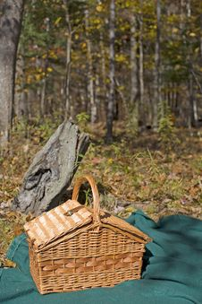 Free Picnic In The Woods Stock Image - 3447721