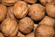 Free Walnuts In The Market Royalty Free Stock Image - 3447846