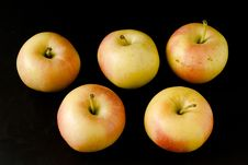 Apples On Black Background Royalty Free Stock Photos