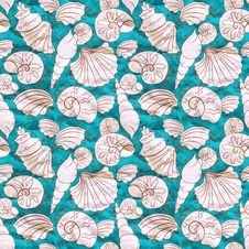 Free Vector Background With White Shells Stock Photo - 34419130