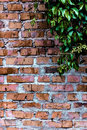 Free Texture And Background (brick Wall) Stock Photos - 34454453