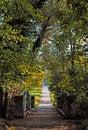Free Bridge In Autumn Park Royalty Free Stock Photo - 34462685