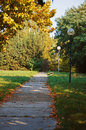Free Pathway In Autumn Park Royalty Free Stock Photos - 34462718