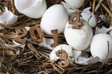 Free 2013 Change To 2014, Eggs Concept Royalty Free Stock Photos - 34480008