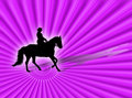 Free Equitation Stock Photography - 3454652