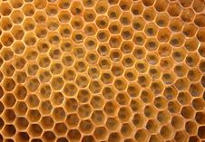 Free Honey Texture Royalty Free Stock Images - 3456029
