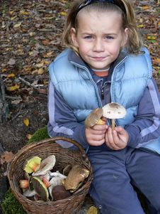 Small Boy Showing Mushrooms Stock Image