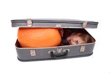 Boy In The Bag Stock Photos