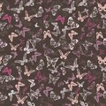 Free Seamless Pattern With Butterflies Stock Photography - 34523192