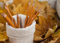 Free Orange Pencils And Yellow Leaves Royalty Free Stock Photo - 34527715