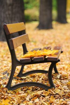 Free Bench In Autumn Park Stock Photography - 34522382