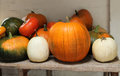 Free Pumpkins And Squashes. Royalty Free Stock Photography - 34579337