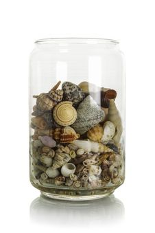 Sea Shells In Jar Stock Image