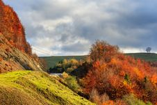 Free Autumn Hillside With Red And Yellow Forest Stock Photography - 34581432