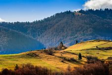 Free Conifer Hillside Near Autumn Forest On Top Of The Mountain Lands Stock Photos - 34581463