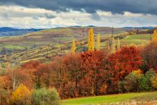 Free Autumn Hillside With Red And Yellow Forest Stock Photography - 34581522