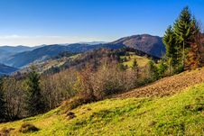 Free Conifer Hillside Near Autumn Forest On Top Of The Mountain Lands Stock Photo - 34581580