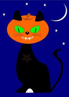 Pumpkin Head Cat Stock Photography
