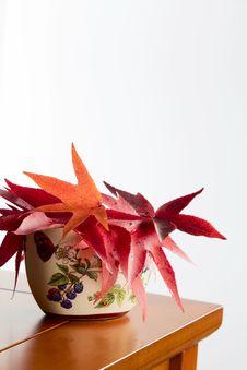 Autumn Leaves In A Ceramic Vase Stock Image