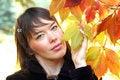 Free Serene Girl Stock Images - 3463384