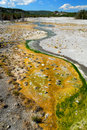 Free Norris Geyser Terrain Stock Images - 3465604