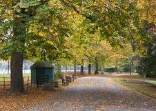Free Autumn Lane Royalty Free Stock Photo - 3460315
