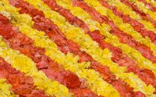 Free Flower Carpet Stock Image - 3460351