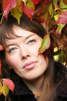 Free Autumn Face Royalty Free Stock Photography - 3463807