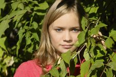 Free Young Girl In The Leaves Royalty Free Stock Images - 3464359